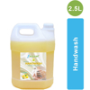 Picture of LEMON HAND WASH  (1 , 2.5 , 5 , 10 LITERS)