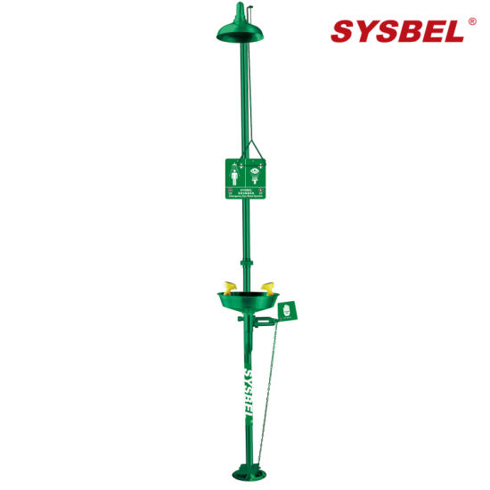 Picture of SYSBEL Safety Equipment Stainless Steel Drench Shower Units with Eye and Face Wash WG7053FG