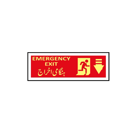 Picture of Emergency Exit Sign (arrow down)